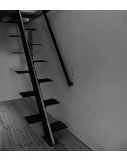 Гусиный шаг  Г3 - «монокосоур»